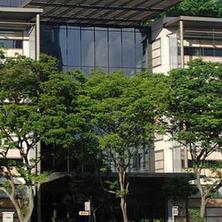 Юридичeское образование в Сингапурском университете менеджме