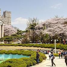 Cómo solicitar ingreso a una universidad de Corea del Sur