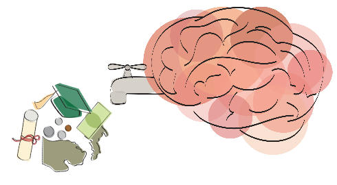 causes and effects of brain drain in economics Brain drain in africa causes of brain drain costs and adverse effects on developing economies of the outflow of skilled personnel in the form of.