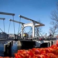 Vida Cultural en Holanda